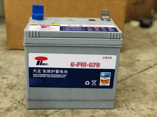Maintenance free battery for genset