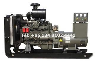 The Requirements for Ricardo Series Diesel Generator in High & Low Temperature