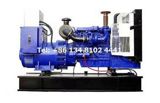 Perkins Diesel Generator Maintenance