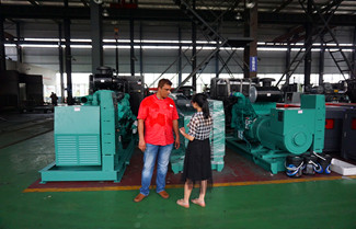 Bangladesh Client Firdous Visited Starlight Power Factory