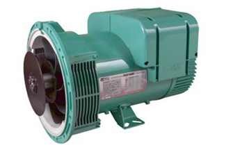 Installation and Commissioning of Leroy-Somer Alternator