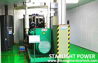 Fault Analysis of Emergency Diesel Generator